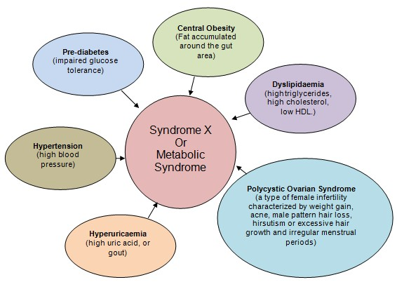 Metabolic Syndrome / Syndrome X / Diabetes